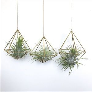 Brass geometric Mobil for air plants